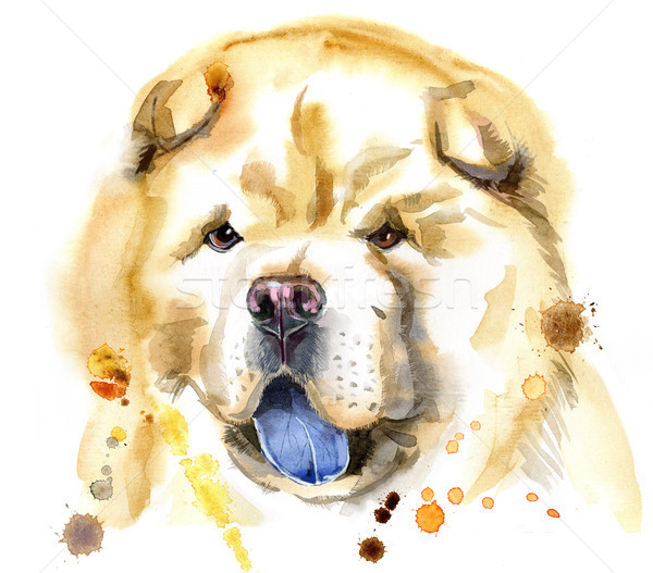 Watercolor portrait of chow-chow dog Stock photo © Natalia_1947