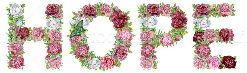 Palabra esperanza acuarela flores aislado dibujado a mano Foto stock © Natalia_1947