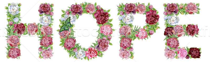 Word HOPE of watercolor flowers Stock photo © Natalia_1947