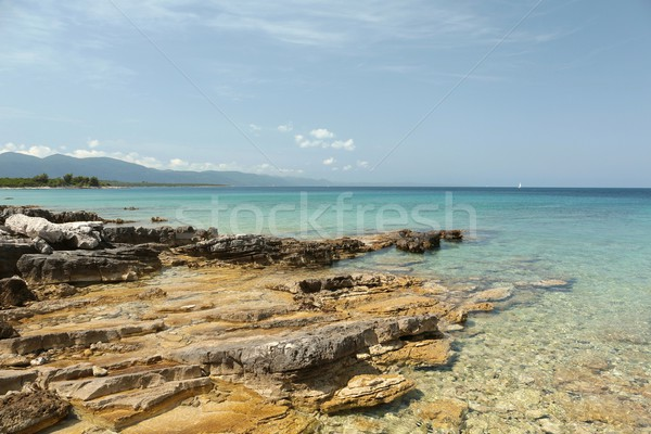 Coast of Adriatic Sea Stock photo © nature78