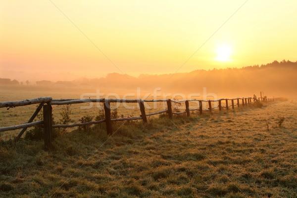 Panorama misty mattina sunrise legno recinzione Foto d'archivio © nature78