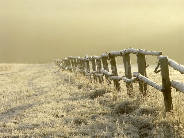 Landscape on a misty morning Stock photo © nature78