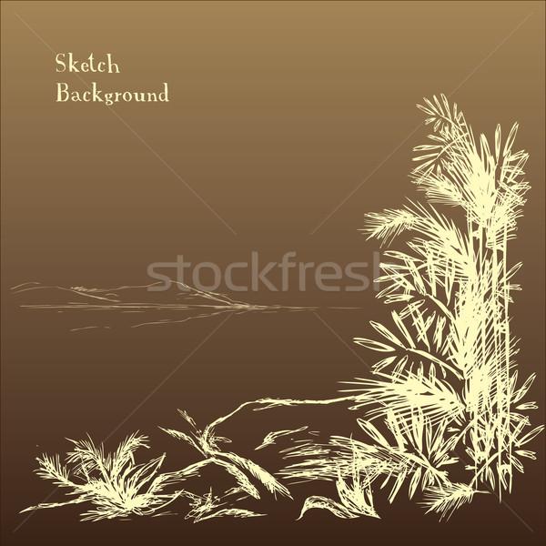Stockfoto: Abstract · bamboe · bomen · bergen · afstand · tuin