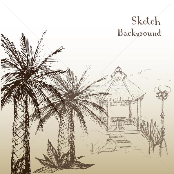 Disegno mani tropicali giardino palme Palm Foto d'archivio © naum