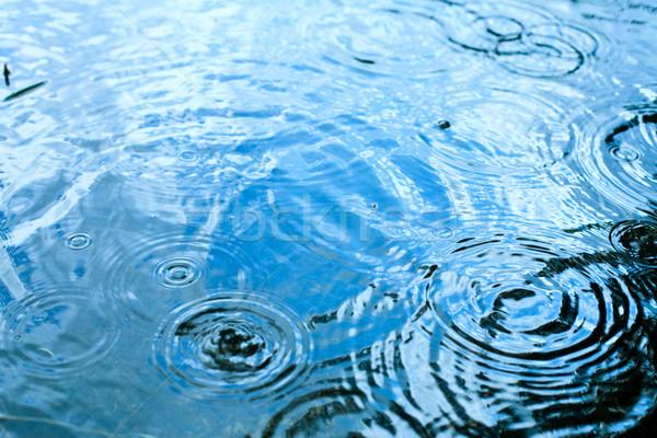雨の 天気 雨 値下がり 水たまり 青空 ストックフォト © naumoid