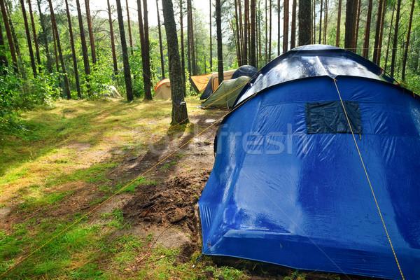 Táborhely eső napos erdő fa utazás Stock fotó © naumoid