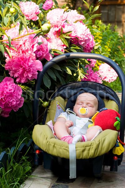 Baby sleeping in a car seat Stock photo © naumoid