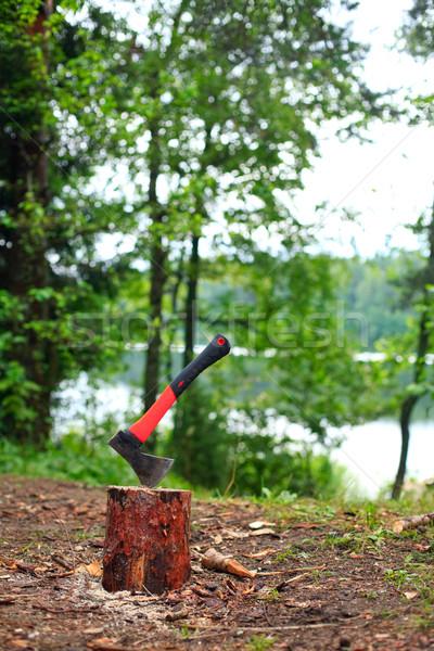 Camping hatchet Stock photo © naumoid