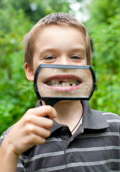 Deciduous teeth Stock photo © naumoid