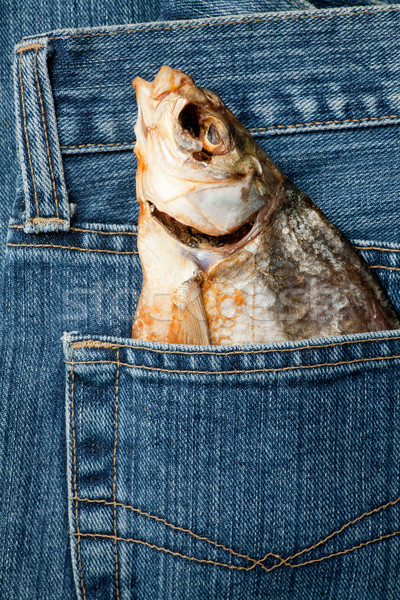Fish in a pocket Stock photo © naumoid