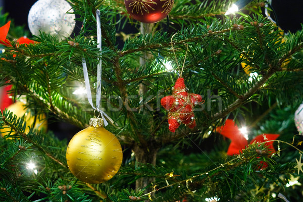 Stockfoto: Kerstboom · decoratie · christmas · guirlande · lichten