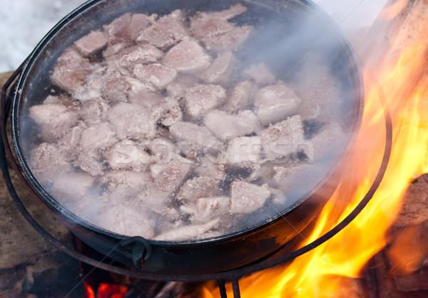 Cozinhar sopa caldeirão fogo floresta laranja Foto stock © naumoid