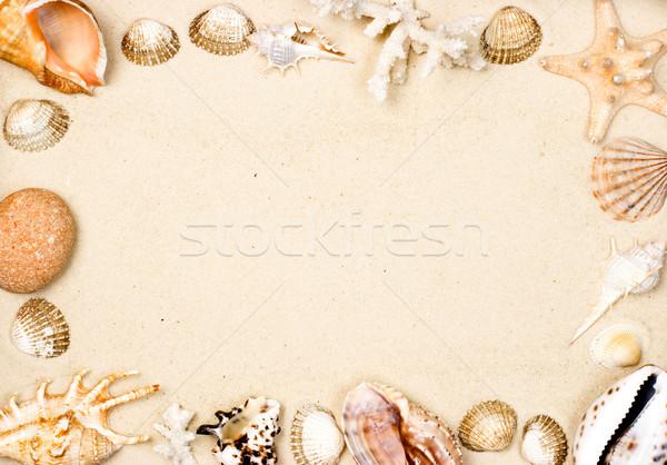 Shells on sand frame Stock photo © naumoid