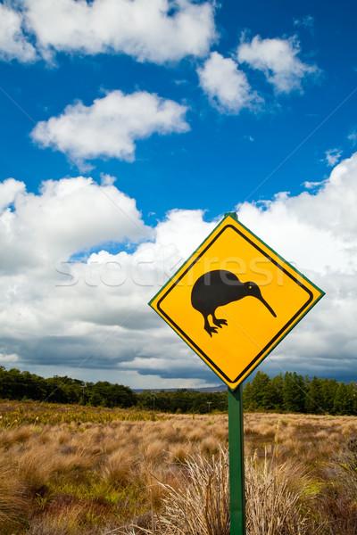 киви знак дорожный знак облачный небе Новая Зеландия Сток-фото © naumoid