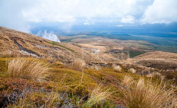 Volcanic landscape Stock photo © naumoid