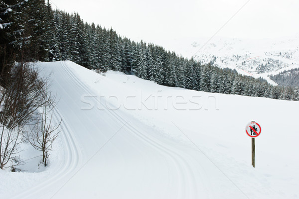 Cross-country ski track Stock photo © naumoid