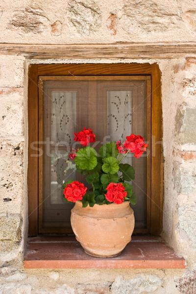Virágcserép ablak Görögország épület otthon keret Stock fotó © naumoid