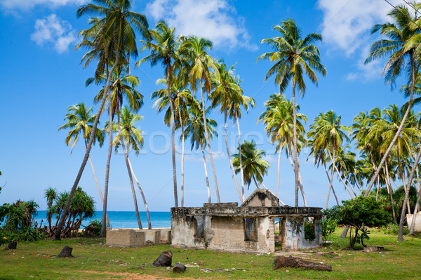 Tsunami ev Sri Lanka ağaç Bina Stok fotoğraf © naumoid