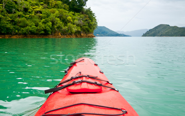Kayaking in New Zealand Stock photo © naumoid