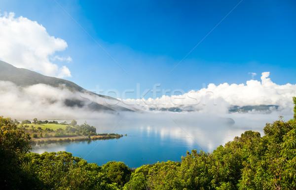 Lake Rotoaria Stock photo © naumoid