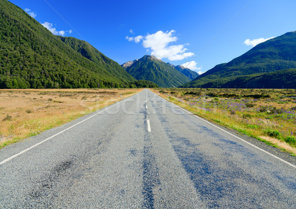 Empty mountain highway Stock photo © naumoid