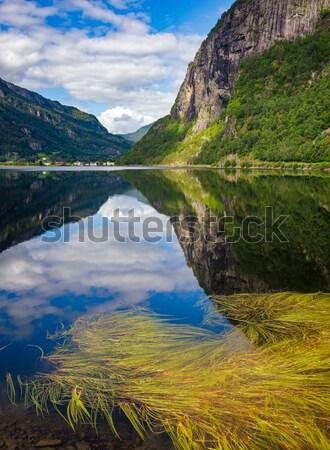 Tó festői kilátás égbolt víz fű Stock fotó © naumoid