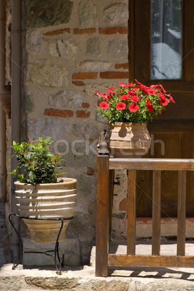 Flowers at the doorway Stock photo © naumoid
