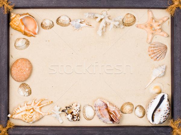 Schelpen zand frame houten frame schelpen zeester Stockfoto © naumoid