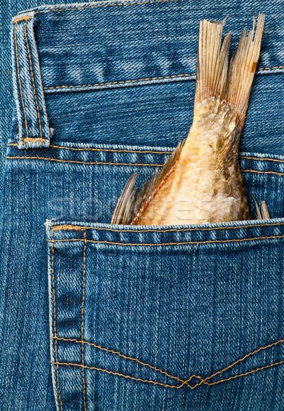 Fishtail in a pocket Stock photo © naumoid