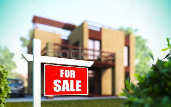 'Home For Sale' sign in front of new house. Stock photo © nav
