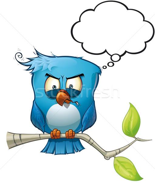 Blue Bird Wrathful Stock photo © nazlisart