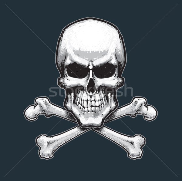 Pirates Skull and Bones Stock photo © nazlisart