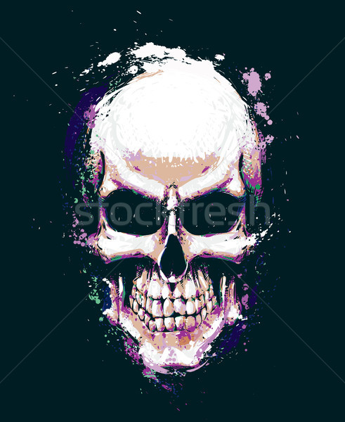 Skull Artistic Splatter Purple n Green Stock photo © nazlisart
