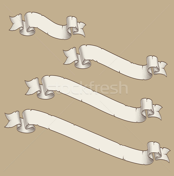 Papyrus Scroll Curved Diagonal Four Sizes 3 Stock photo © nazlisart