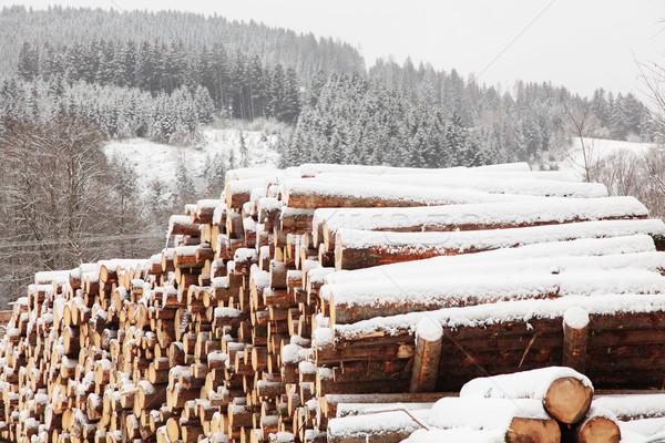 Schnee bedeckt Stock foto © ndjohnston