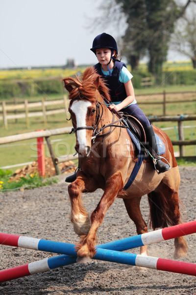 лошади прыжки девушки обучения ребенка Сток-фото © ndjohnston