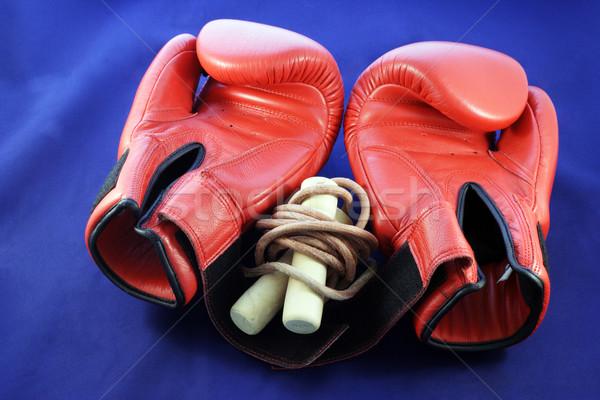 Boxing gloves Stock photo © ndjohnston