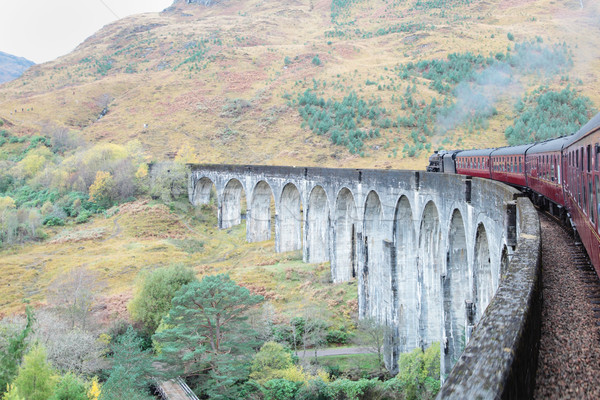 Steam train on the Glenfinnan Viaduct in Scotland  Stock photo © ndjohnston