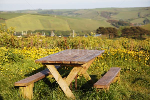 Picknick-Tisch Blumen Hügeln Fluss Boote Stock foto © ndjohnston