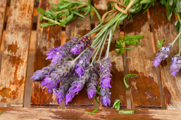Freshly picked and washed lavender Stock photo © neirfy