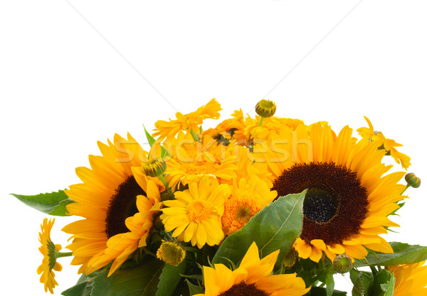 sunflowers and marigold flowers close up Stock photo © neirfy