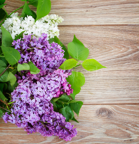 Foto stock: Lila · jarrón · frescos · flores · frontera