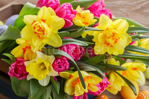 Narcisos monte fresco primavera amarelo Foto stock © neirfy