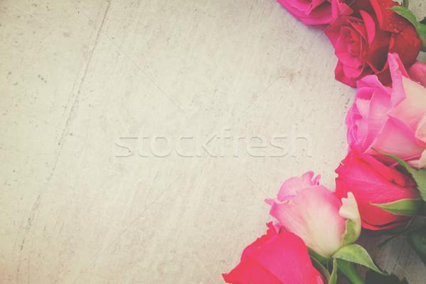 Pembe taze güller sınır beyaz Stok fotoğraf © neirfy