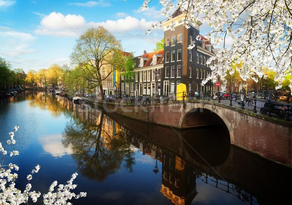 Häuser Niederlande Landschaft Kanal Spiegel Stock foto © neirfy