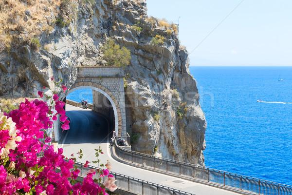 Route côte Italie célèbre pittoresque fleurs Photo stock © neirfy