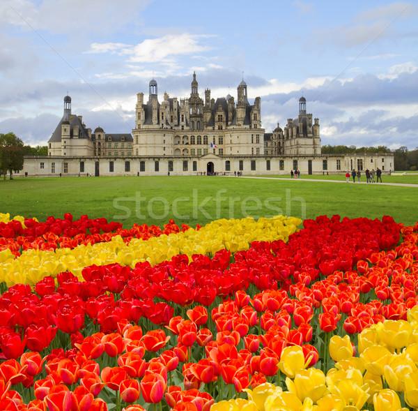 Chambord castle,  Loire valley,F rance Stock photo © neirfy