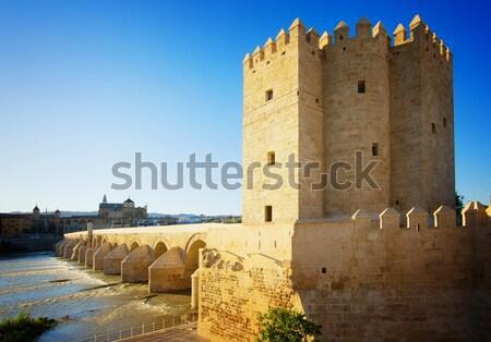 old town of Cordoba at twilight, Spain Stock photo © neirfy