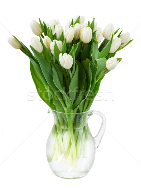 bouquet of white  tulips in vase Stock photo © neirfy
