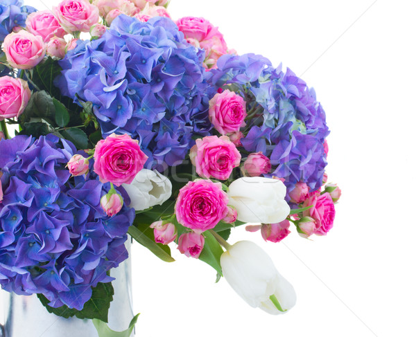 white tulips, pink roses and blue hortensia flowers Stock photo © neirfy